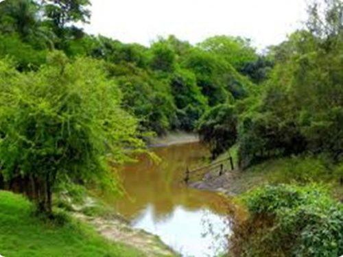 Riserva Nazionale Formosa: 10.000 ettari destinati alla conservazione e ricerca.