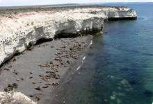 Penìnsula Valdès, vero paradiso naturale nel cuore della Patagonia.