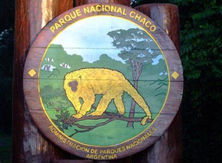 Parco Nazionale Chaco, a nordovest della città de Resistencia.