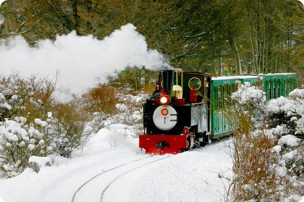 ushuaia-tren-fin-del-mundo