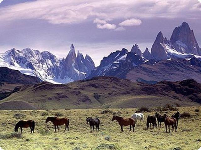 patagonia_india4