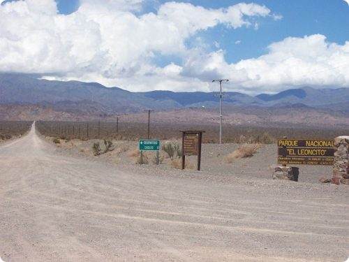 Pampa del Leoncito una vera e propria oasi nel deserto sanjuanino.