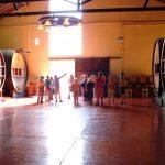 Cuyo è una regione fortemente vocata all'agricoltura, in particolare alla viticoltura.